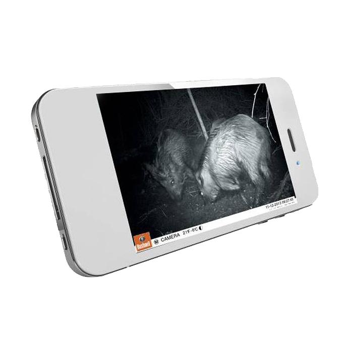 Bushnell TrophyCam HD Wireless Réception des photos par mms sur un smartphone