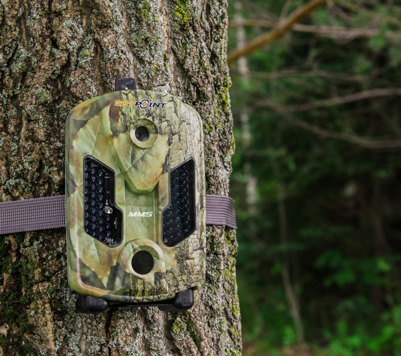 La caméra Spypoint MMS se fixe autour d'un arbre grâce à la sangle fournie