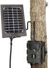 Panneau Solaire Bushnell pour Caméra TrophyCam Wireless GSM GPRS fixée sur un arbre en situation réelle pour photos et vidéos