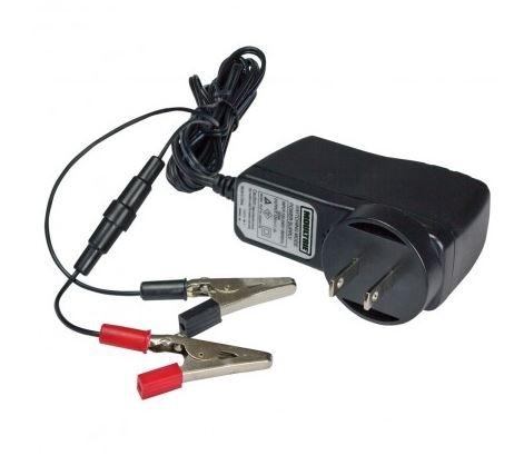 Batterie externe 12v pour caméras Wingscapes