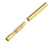 Fiche Bullet Gold 2mm Mâle et femelle