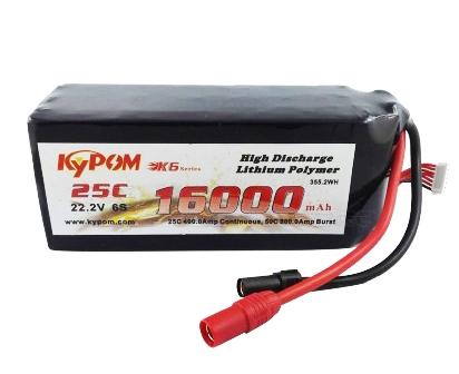 Batterie haute performance pour DJI S1000