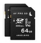Match Pack de 2 cartes SD 64Go V90 pour Panasonic GH5 et GH5S - Angelbird