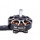 Moteur Robo RB1202.5 2-4 5800KV - Flywoo