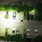 Projecteur LED Wingsland Z15 pour DJI M200