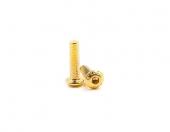 Vis dorée M3 10mm pour Corsair
