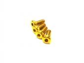 Vis M3x10mm en Titane x4 jaune