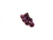 Vis M3x8mm en Titane x4 violet