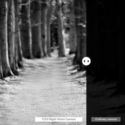 Vue forêt filtrée non filtrée par le système nocturne caméra f210